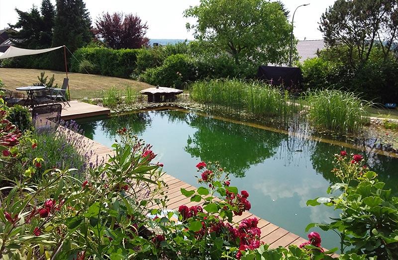 Schwimmteich Garten